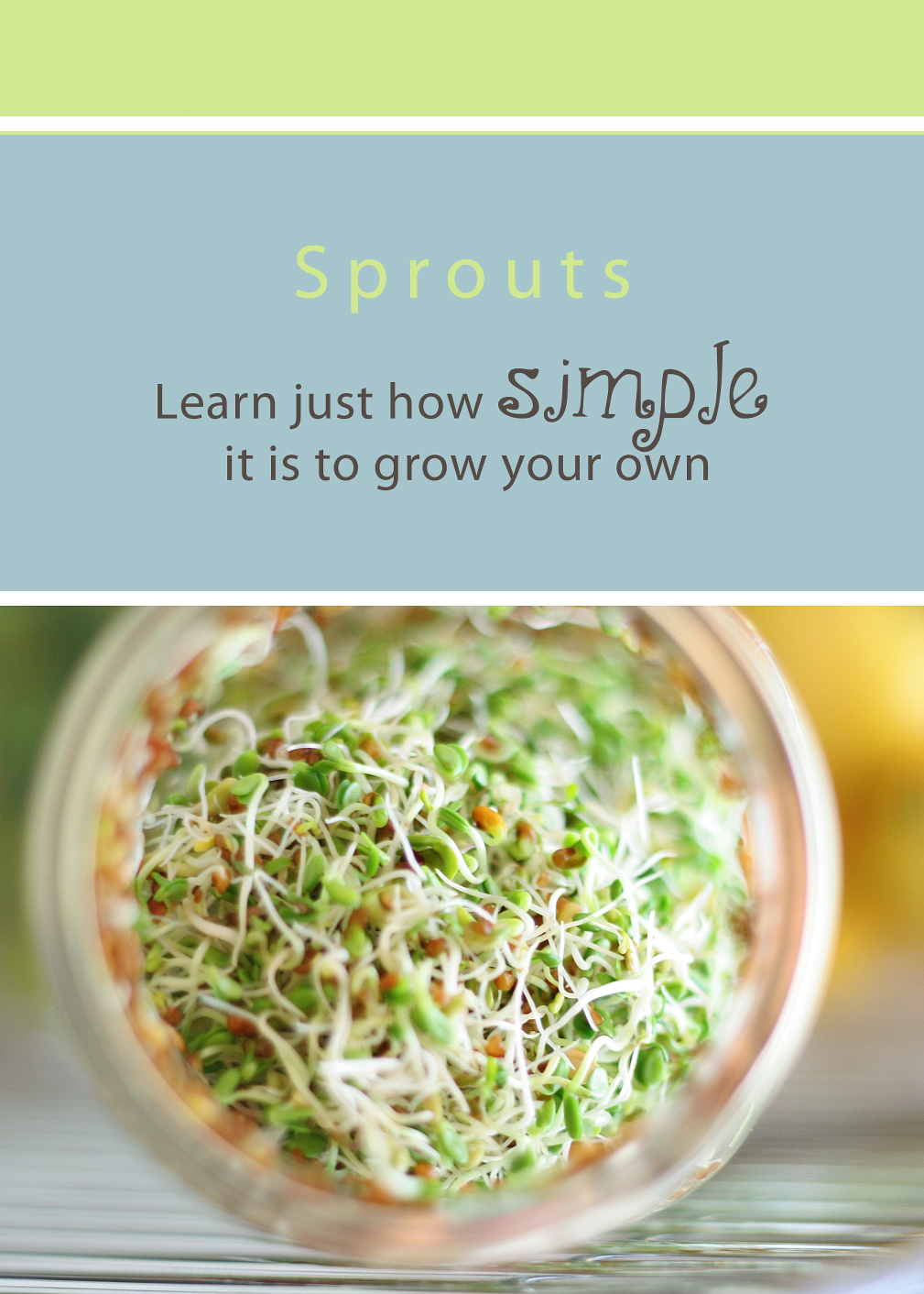 grow sprouts cover copy