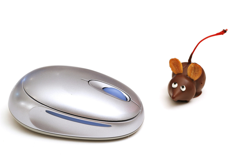 shot of a single chocolate mouse beside mouse