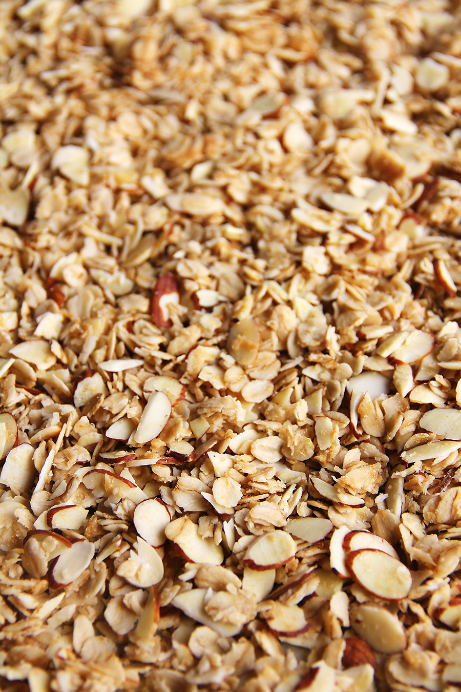 granola upclose vertical