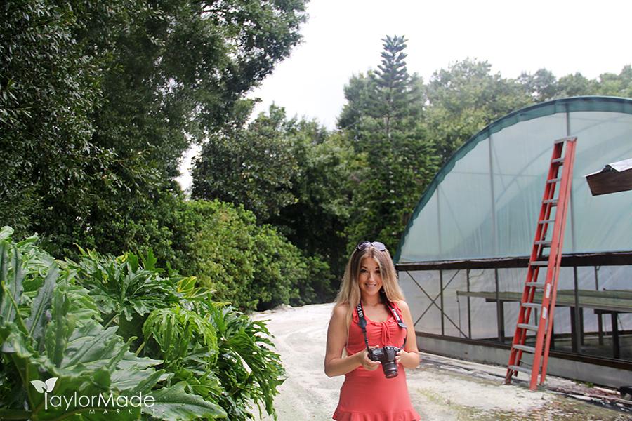 microgreen farm andrea 001