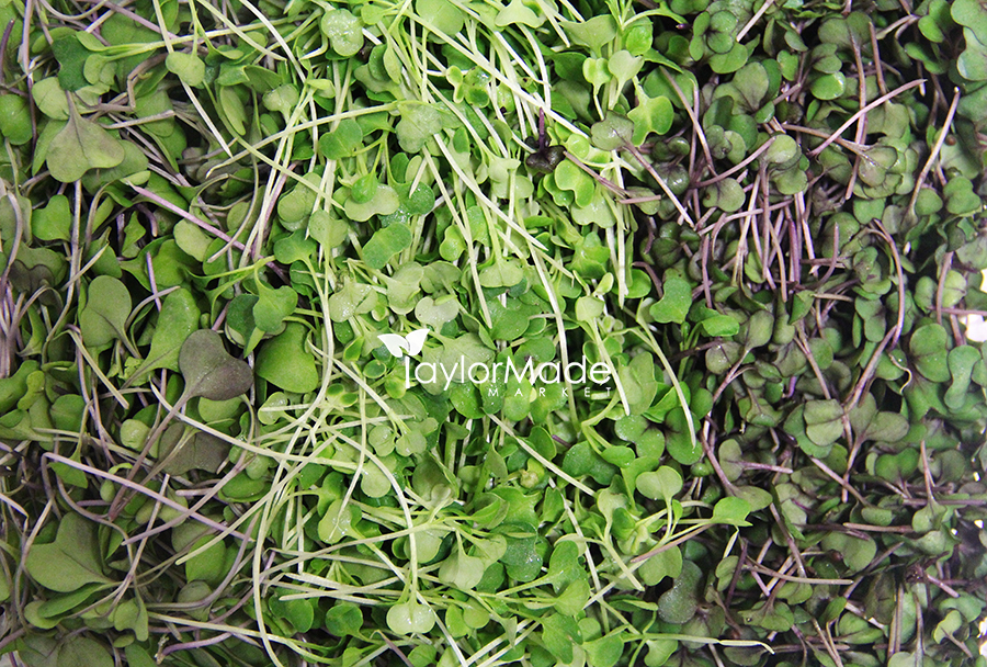 microgreens background